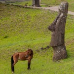 Horse and moai sharing a view